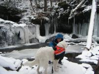 01Jan10 - Ricketts Glen State Park Emily03.jpg